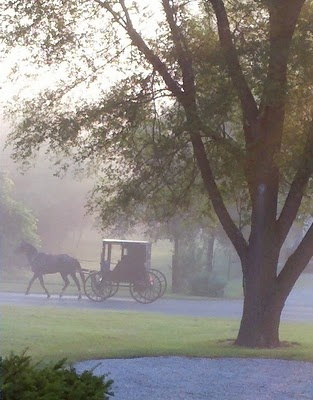 Ears Mornings, Early Mornings, The View, Amish Buggy, Amish Country, Pennsylvania Dutch, Amish Lifestyle, Misty Mornings, Pennsylvania Amish