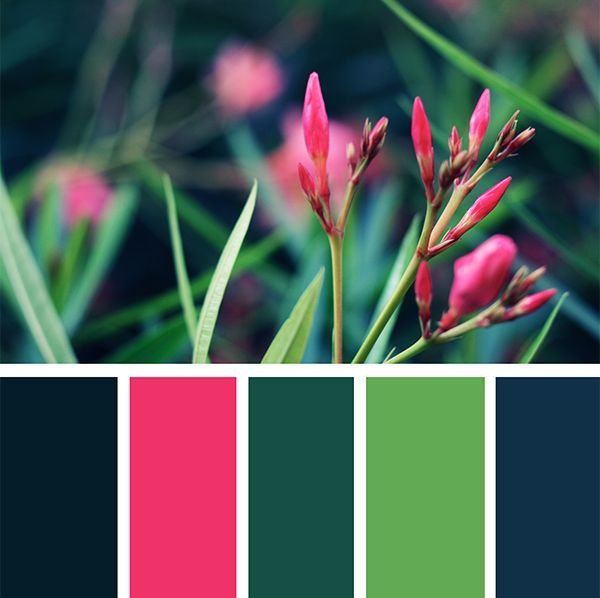 How to make color palettes in photoshop by The Paper Pegasus