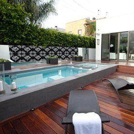 Merbau decking around pool with Kangaroo Paw backdrop