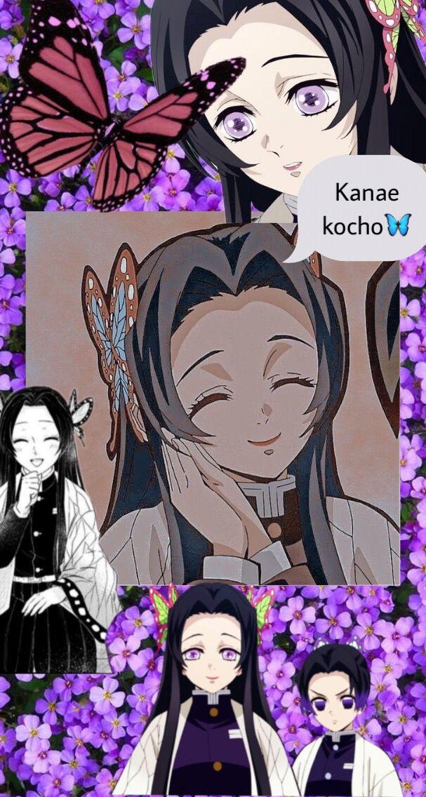 Kanae Kocho Wallpaper Art Anime Wallpaper