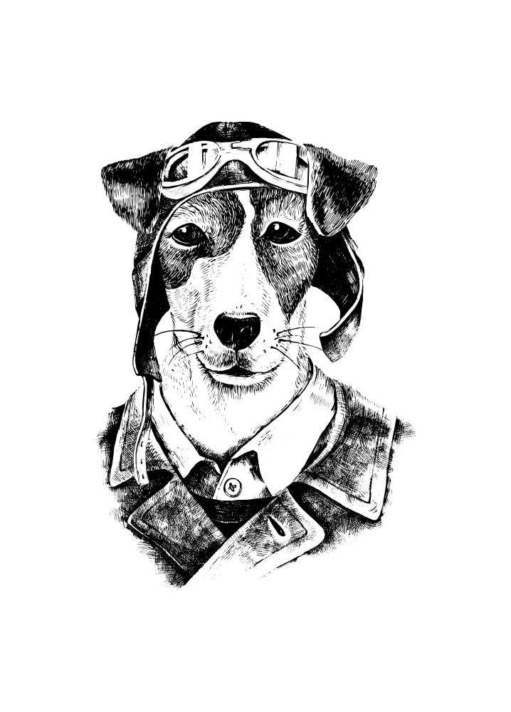Perro hipster - Perro con gafas y cazadora de aviador