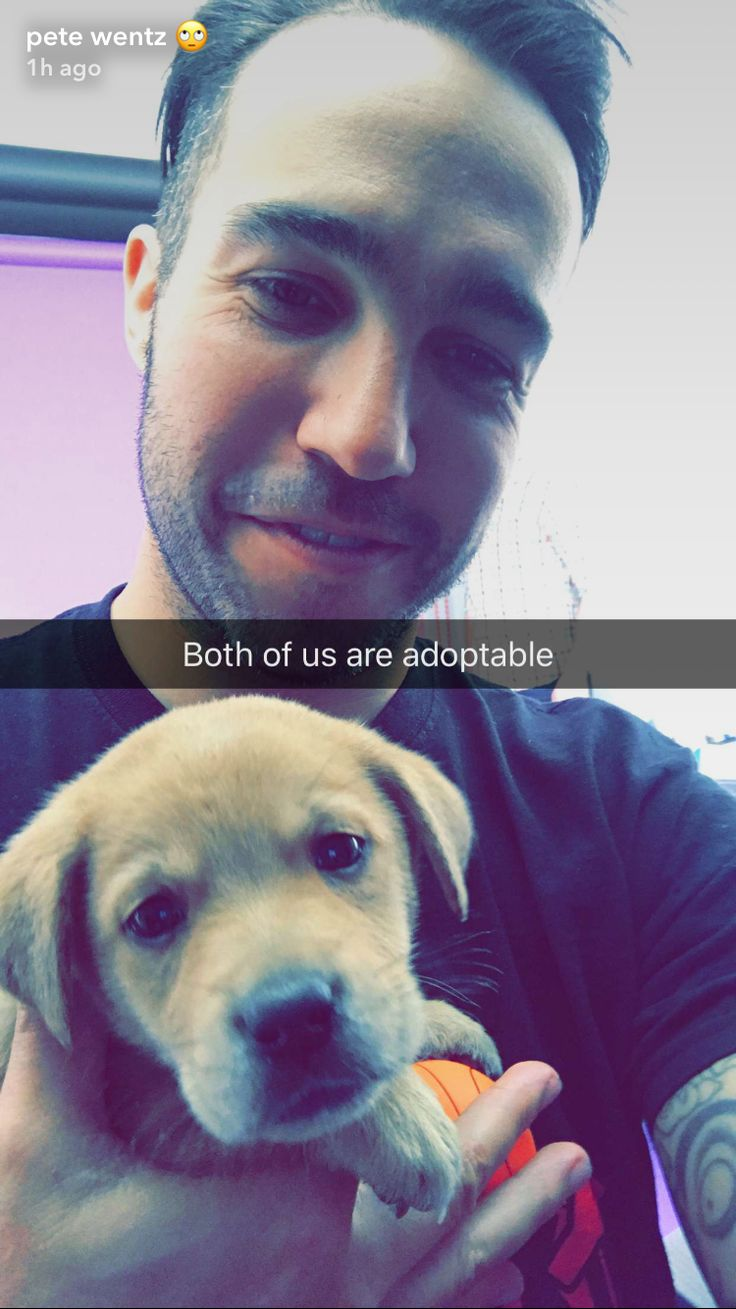 Yes hello I would like to adopt one Pete Wentz please Actually. Make that 13674368522675