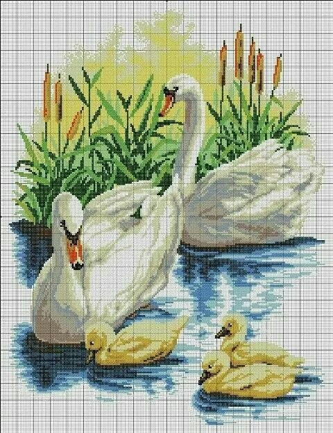 Swan cross stitch.