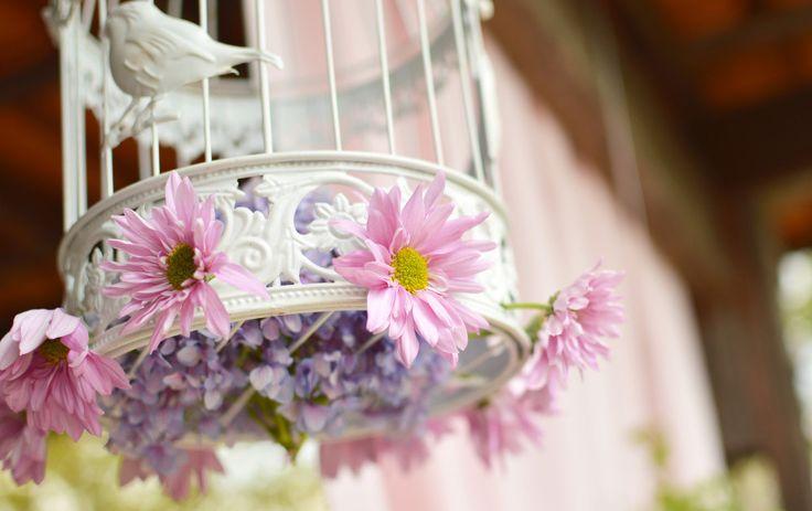 Dekoracyjna klatka z kwiatami