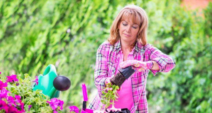 Είναι η κηπουρική η καλύτερη ψυχοθεραπεία;  #αντικαταθλιπτικο #βεράντα #γλάστρες #ευτυχια #κήπος #κηπουρικη #κηπουρος #λουλουδια #μπαλκονι #σπιτι #φυτά #ψυχολογια
