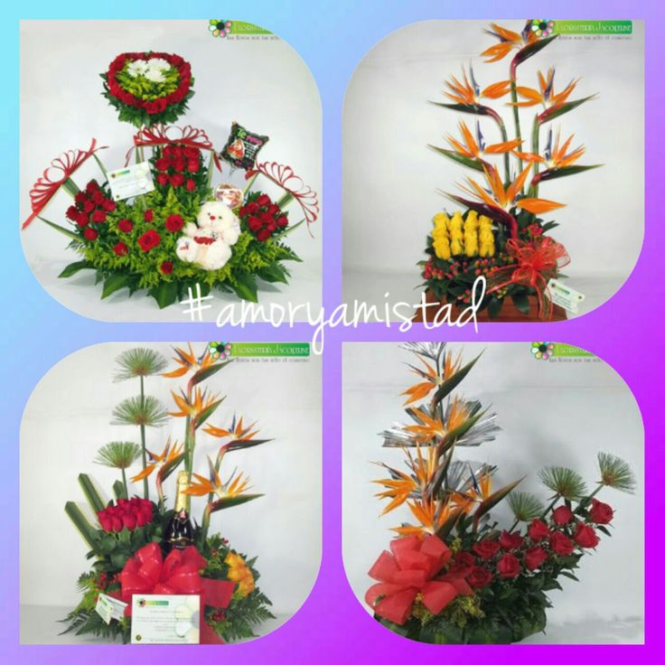 Enamórate cada día Más! Envíale Flores en #AmoryAmistad este 17 de Septiembre Visita bit.ly / 2bWFhLi Pbx: 448 66 66