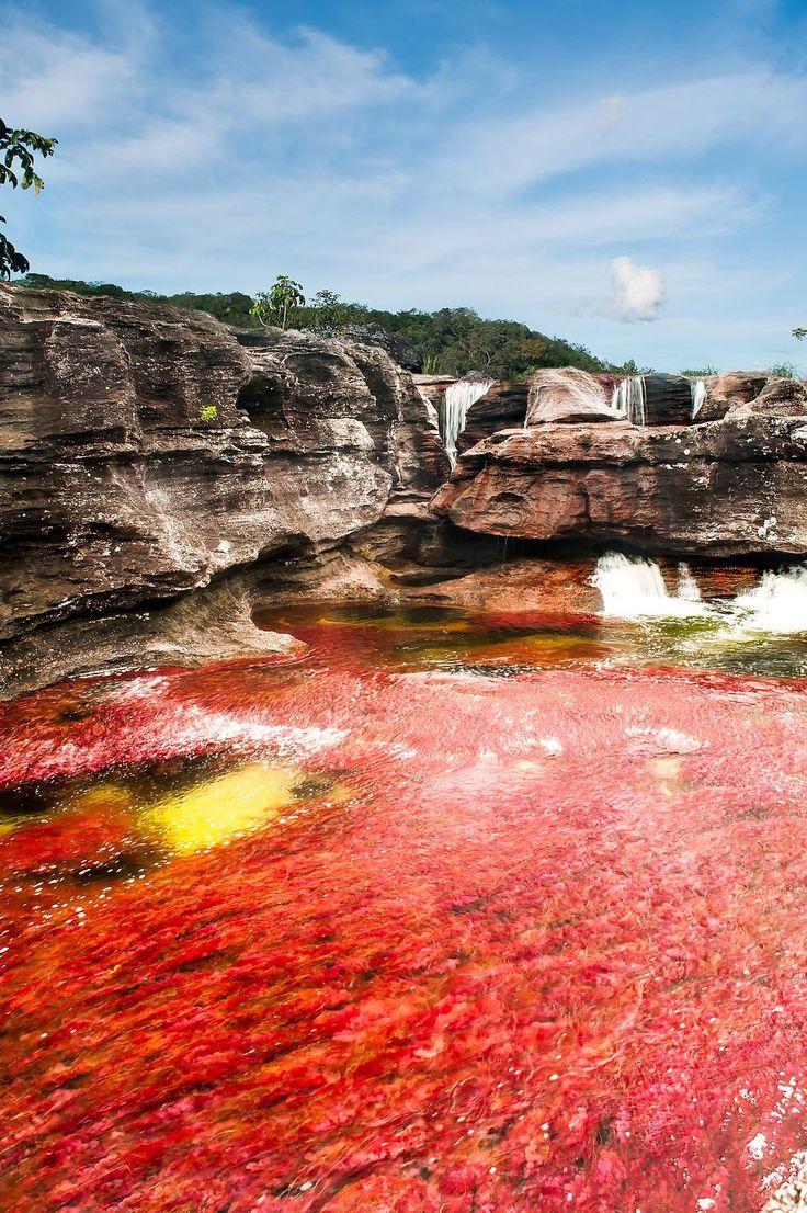 Caño cristales, Colombia. #travel #viajar