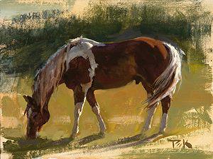 """""""Wyoming Summer"""" ~ Carol  Peek   ~ 6 x 8"""