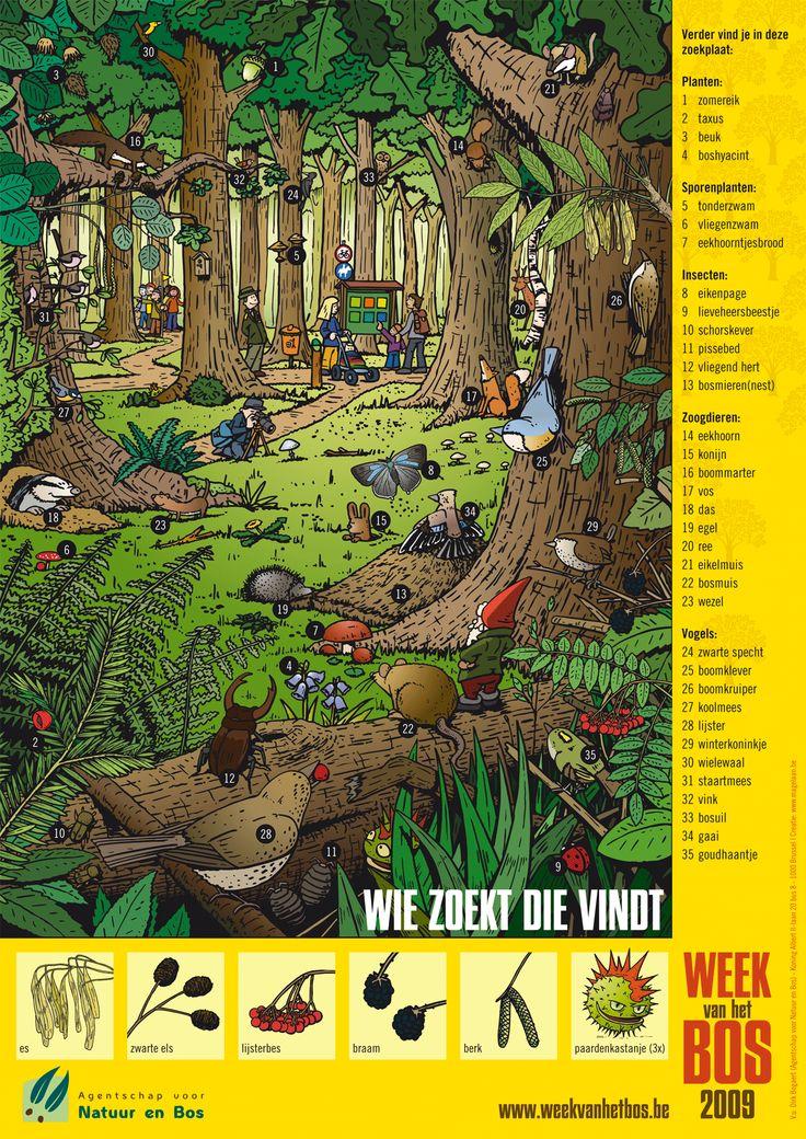Themed Poster in the Forest. Praatplaat.....Wat kun je allemaal in het bos tegenkomen?.... en Waar of niet waar? Zie jij de niet waar figuren?
