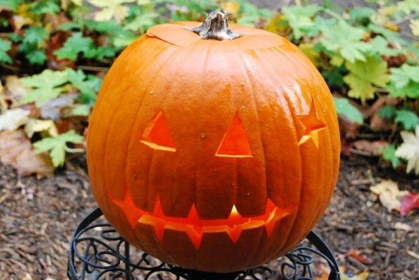 Creuser une citrouille halloween la d co pinterest potirons bricolage lanterne et lampions - Comment creuser une citrouille ...