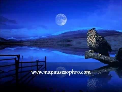 http://www.mapausesophro.com Cet exercice vous aide à vous libérer de vos émotions négatives et à les remplacer par du positif. A faire surtout lorsque vous ...