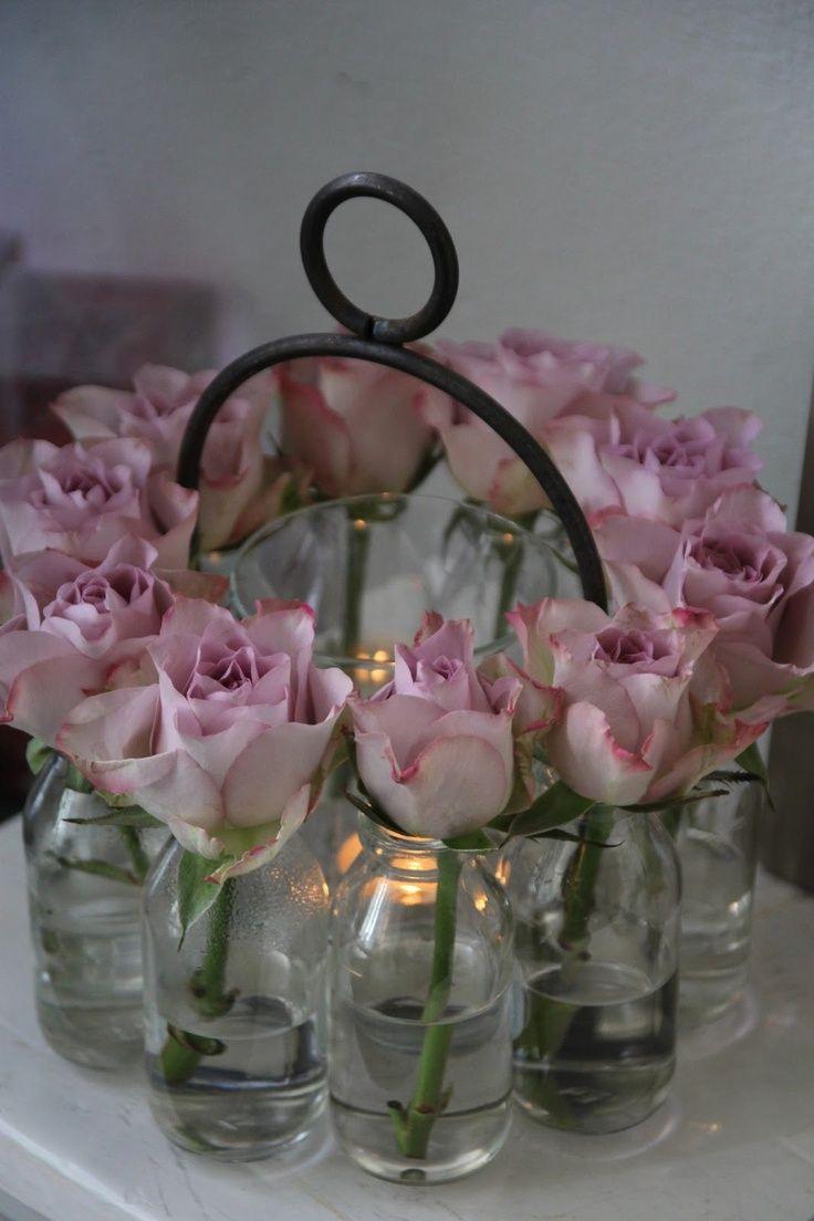 ring of roses - Franse Lelie