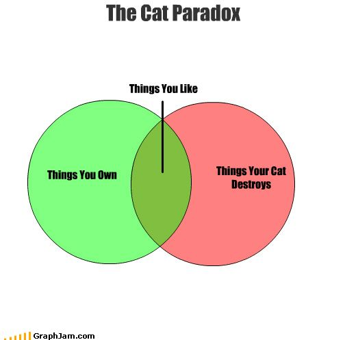 Funny Venn Diagrams The Cat Paradox In A Venn Diagram