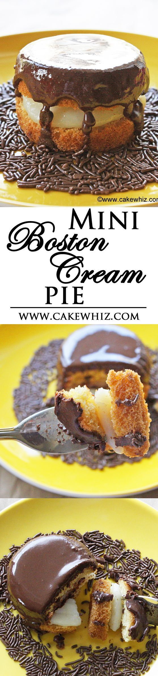 These MINI BOSTON CREAM PIES are so cute! They are made with bite sized vanilla cupcakes, filled with creamy vanilla pudding and topped off with glossy chocolate ganache! From cakewhiz.com