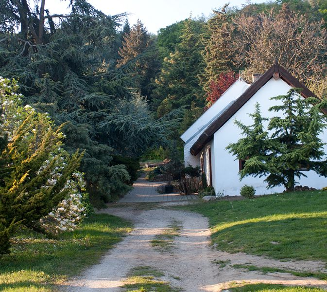 Folly Arborétum (Badacsonytomaj) http://www.turabazis.hu/latnivalok_ismerteto_4570 #latnivalo #badacsonytomaj #turabazis #hungary #magyarorszag #travel #tura #turista #kirandulas