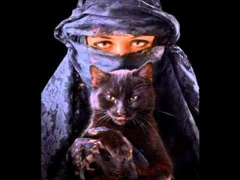 Desert Rose-Sting & Cheb Mami (arabic remix)