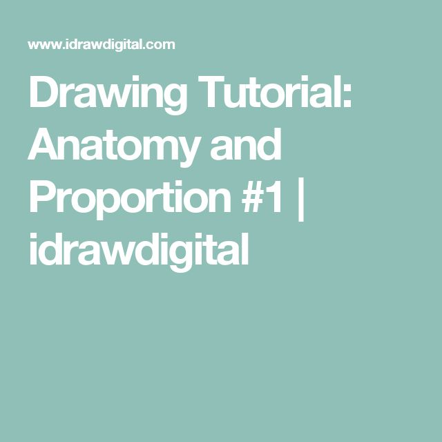 Drawing Tutorial: Anatomy and Proportion #1 | idrawdigital