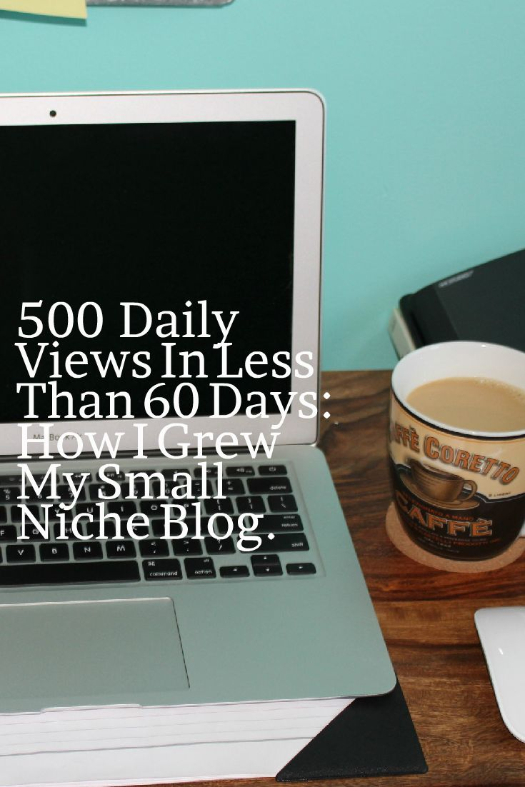 500+ Daily Views In Less Than 60 Days: How I grew My Small Niche Blog