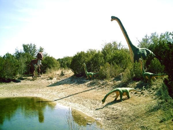 Dinosaur World Glen Rose Texas0just 60 miles from DFW-Over 150 life-size models in natural outdoor settings, plus a fossil dig, playground, museum & more.--1058 Park Rd 59, Glen Rose, TX-an inexpensive and fantastic way to spend the day! www.dinosaurworld.com/texas