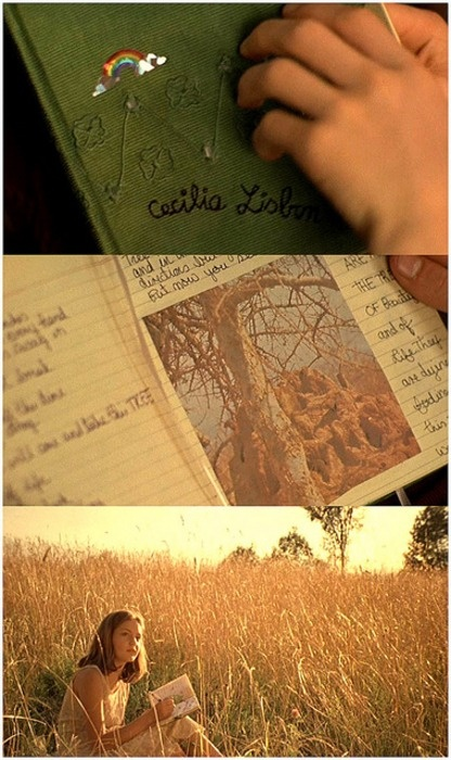 "Virgin Suicides - warm exterior sunset in the field look for beach scene ""walk"""
