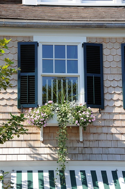 77 best images about cedar shingled houses on pinterest for Nantucket shingles