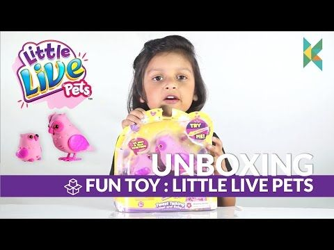 Little Live Pets Tweet Talking Owl and Baby India - Kyrascope - YouTube