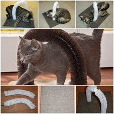 Attmosfrom Instructables shared this wonderful DIY project of making self-petting station for cats.This is a fun little project that can be completed in an hour or two depending on what you have laying around the house. It's a self-petting station for your cats so that they can get a good petting. I love this!!!