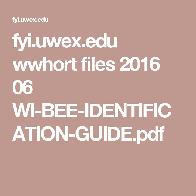 fyi.uwex.edu wwhort files 2016 06 WI-BEE-IDENTIFICATION-GUIDE.pdf