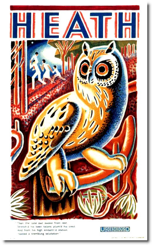 1933 Owl Poster