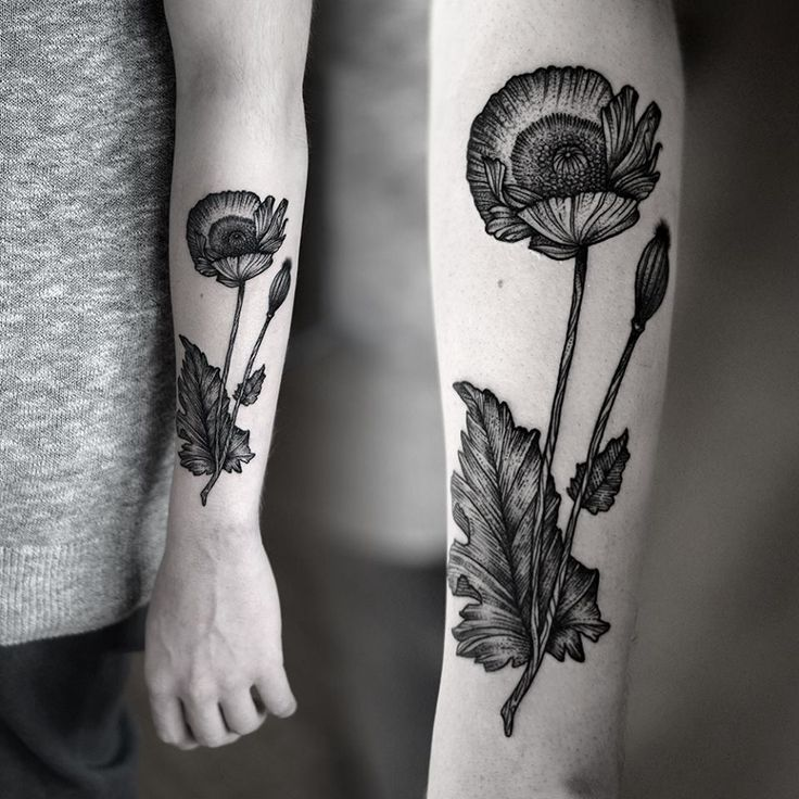 Botanical illustrations are making gorgeous black and white tattoo. Here by Kamil Czapiga.