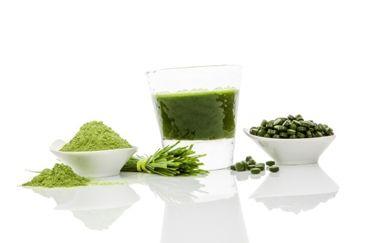 tarwegras, tarwe, shot, smoothie, groen, wheat, grass, gezond, tips, recept, effect, superfood, bio-energie, levenskracht, nadelen, wanneer ...
