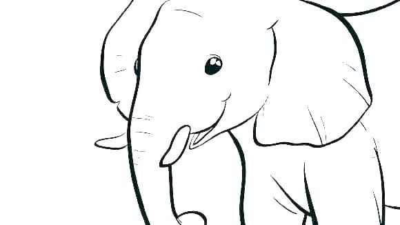 Elephant Coloring Pages Pdf Free Coloring Sheets Elephant Coloring Page Elephant Colouring Pictures Animal Coloring Pages