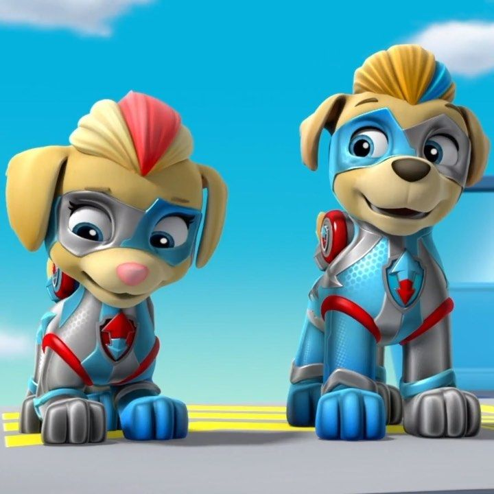 Paw Patrol Coloring Pages Twins Photos