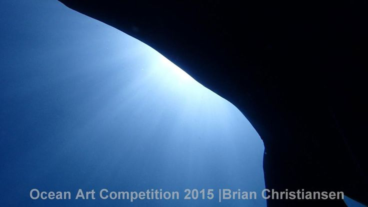 1st place, compact wide angle category, 'Cetaceclipse' #Piclectica