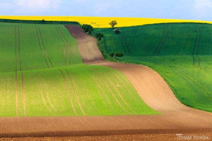Colourful waves by Tomáš Vocelka on 500px
