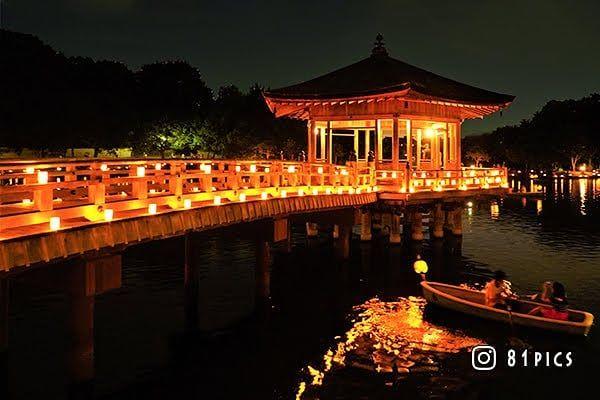 なら燈花会deボートデートしてる人を撮影 燈花会 浮御堂 奈良公園 手持ち撮影 ボート ゆらゆら 夜景ら部 灯籠 ロウソク ライトアップ 平成最後の夏 夏の写真 関西カメラ部 Sonyalpha A7iii Sonyworldclub Japan Of Insta Team J