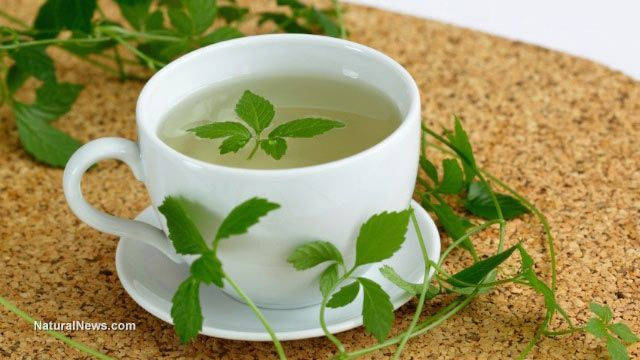 Three herbal teas that can aid digestion and treat stomach problems