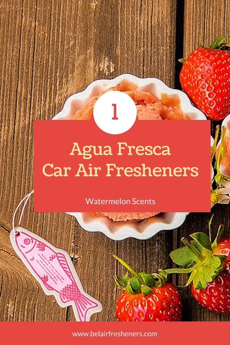 Fruity Fortune Fish (Fruit Punch) in 2020 Best car air