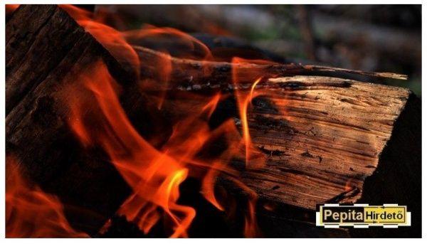 Cser tűzifa kedvező áron, Simontornya [Pepita Hirdető]