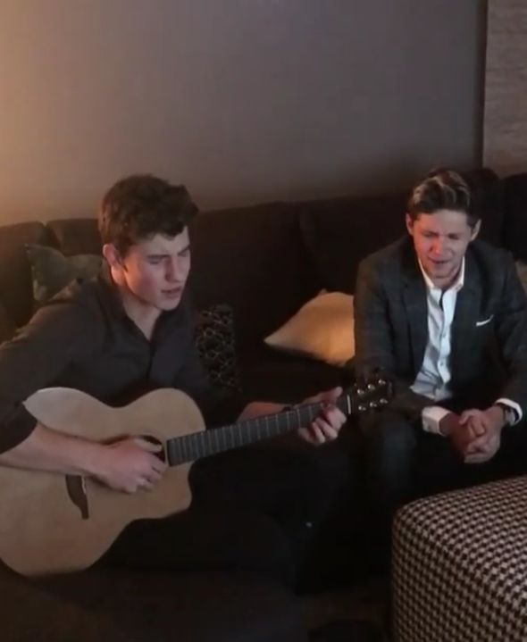 "Shawn Mendes Sang ""Mercy"" With Niall Horan: Watch"