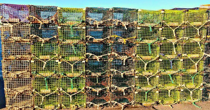 Searose Lobster Trap Co. of Scarborough, Main sells trap wire & supplies + also makes unique trap furniture.  [Lobster Recipes, Lobster, Fresh Seafood, Lobster Tail, Lobster Bisque, Lobster Roll] https://lobsteranywhere.com Live Maine lobster delivery direct from LobsterAnywhere. New England's mail order premium seafood company online since 1999 with ocean fresh and frozen lobster on sale for your business or special event. Guaranteed overnight USA. Orders guaranteed. #Lobster #Recipe…