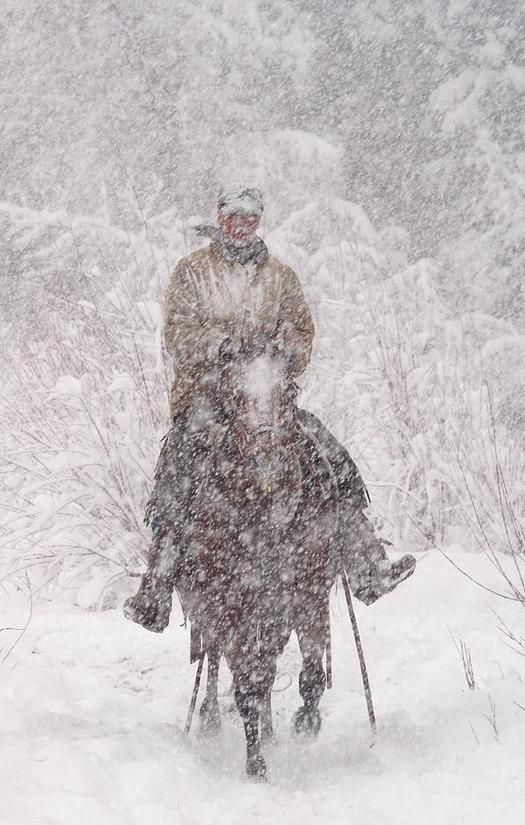 Horse and rider in a snowstorm.