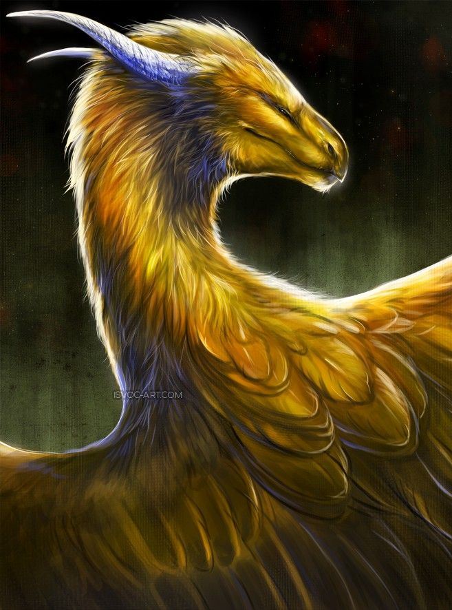 Dragon art gold feathered best steroid nasal spray for congestion