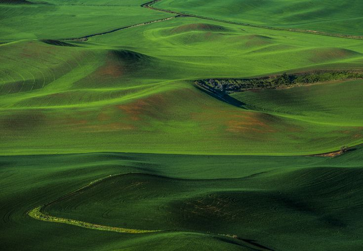 palouse farms and hills at sunset - Palouse farmlands at sunset with nice sculpted hillsides.