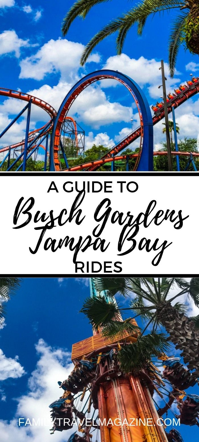 All Day Dining Deal Busch Gardens Review