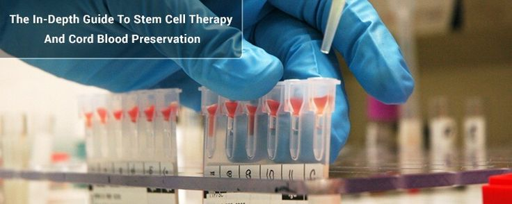 Stem Cell Therapy is very important in medical research. Here is indepth guide to stem cell therapy and cord blood preservation.