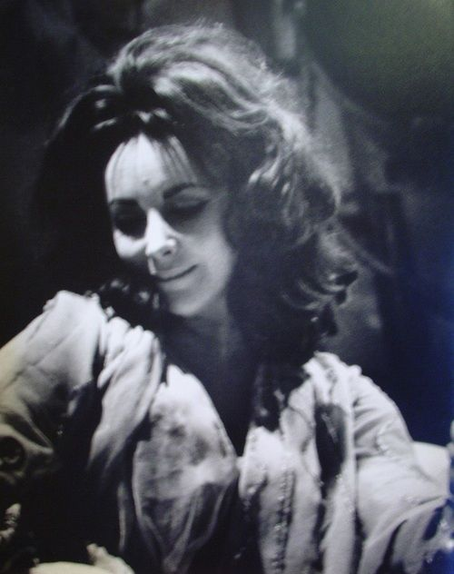 Roddy Mcdowall And Elizabeth Taylor 17 Best images ...