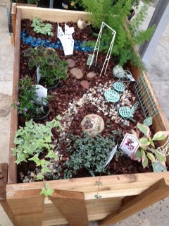 fairy gardening in raised beds from our stauffers of