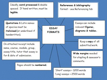 steps to write an essay in exam