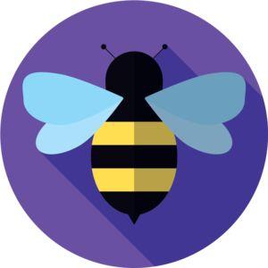 Bee   Design   Flat   Icon   Illustration   Bumblebee   Honey   Insect   Bug   Kayla Folino